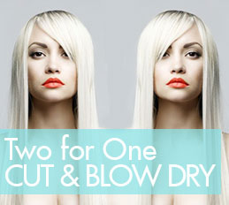 TWO FOR ONE CUT AND BLOW DRY AT PAISLEY